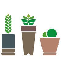 グリーン(多肉植物-2)