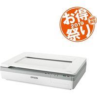 エプソン お得祭り2019キャンペーンモデル/A3フラット DS-50000C0 (直送品)