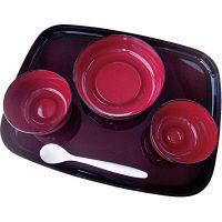 大成樹脂工業 自立支援食器IROHA基本セット ライン春慶 iroha02s 1セット(直送品)
