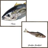 マッチングジャパン フチなし ラミあり フレームステッカー リアル魚介『魚介_05』 CO-9105-AS 1個(2枚セット)(直送品)