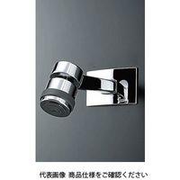 LIXIL(リクシル) ヴィラーゴ 固定シャワー BF-5R 1個(直送品)