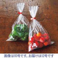ベルグリーンワイズ オーラパック 鮮度保持袋 12号 ポリ袋(規格袋) 1セット(1000枚:100枚入×10袋)