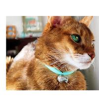 necono 猫用 ルーチェ ベル ターコイズ 首輪 おしゃれ かわいい 1個