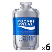 大塚製薬 ポカリスエットアイススラリー 100g 1箱(6個入)