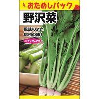 ニチノウのタネ 野沢菜(おためしパック) 日本農産種苗 4960599256102 1セット(10袋入)(直送品)
