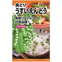 ニチノウのタネ うすいえんどう(実取りえんどう) 日本農産種苗 4960599207609 1セット(5袋入)(直送品)