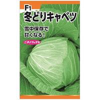 ニチノウのタネ F1雪中甘藍 日本農産種苗 4960599232502 1セット(3袋入)(直送品)