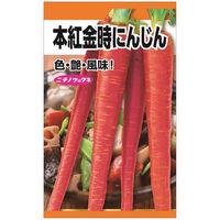 ニチノウのタネ 本紅金時人参 日本農産種苗 4960599259509 1セット(5袋入)(直送品)