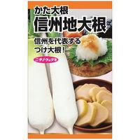 ニチノウのタネ 信州地大根 日本農産種苗 4960599258502 1セット(5袋入)(直送品)