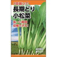 ニチノウのタネ 長期どり小松菜 日本農産種苗 4960599183705 1セット(5袋入)(直送品)