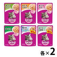 【お試しセット】カルカン 猫用 パウチ まぐろ 12袋(6種各2袋)マースジャパン