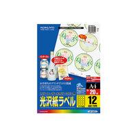 コクヨ(KOKUYO) カラーLBP&コピー用光沢紙ラベル A4 12面カット 20枚入 LBP-G6913 1袋(20シート入)(直送品)