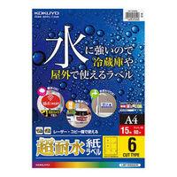 コクヨ(KOKUYO) カラーLBP用 超耐水紙ラベル A4 6面カット 15枚入 LBP-WS6906 1袋(15シート入) (直送品)