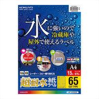 コクヨ(KOKUYO) カラーLBP用 超耐水紙ラベル A4 15枚入 65面カット LBP-WS6965 1袋(15シート入) (直送品)