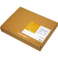 桜井 ミルキーホルダー ゴールド A4 1冊(100枚入)(直送品)