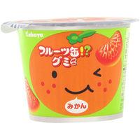フルーツ缶グミ 4901550269175 50G×24個 カバヤ食品(直送品)