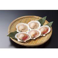 北海道漁業協同組合連合会 業務用 ほたて片貝(9ー10cm) 166228 1ケース 10枚×10PC(直送品)