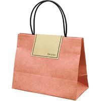 山櫻 ちいさいバッグ スカーレット 10袋セット 351093 1セット(1種×10袋)(直送品)
