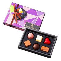 【ワゴンセール】ルクス・アルクス プレーンショコラ 6個入 1箱 チョコレート ギフト ホワイトデーの画像