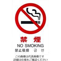 光(ヒカリ) 光 多国語ピクトサイン 禁煙 TGP2032-1 1枚 195-0171(直送品)