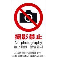 光(ヒカリ) 光 多国語ピクトサイン 撮影禁止 TGP2032-2 1枚 195-0172(直送品)