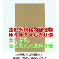 キングコーポレーション キングコーポ ポストイン封筒小 未晒100g/m2 10枚 POSTIN10 1パック(10枚) 208-0778(直送品)