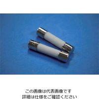 エスコ(esco) 250Vx1.0A/φ 6.4mm 管ヒューズ(消弧剤入/2本) 1セット(20本:2本×10袋) EA758ZZ-22A(直送品)