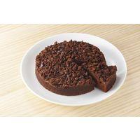 オーランドフーズ 業務用 ザクザクチョコレートケーキ 12151069 1ケース 380g×4個(直送品)
