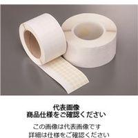 岩田製作所 マスキングテープC TO025 1個(66m)(直送品)