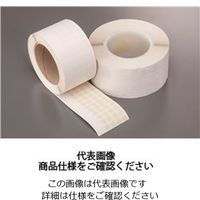 岩田製作所 マスキングテープC TO050 1個(66m)(直送品)