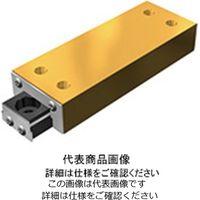 THK(ティーエイチケー) リニアボールスライド LS形 LS 877 1個(直送品)