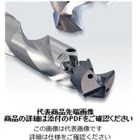 マパール(MAPAL) TTDドリルチップ TTD-4F01-2250-MxF 1個(直送品)