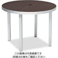 テラモト(TERAMOTO) サンレノテーブル100 ブラウン MZ-593-000-4 1台(直送品)