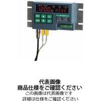 安立計器 放射温度計+接触式温度計[デュアルサーモ] 設置タイプ R-4602 1台(直送品)