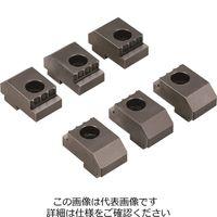 ナベヤ(NABEYA) ロックタイト5軸マシンバイス付属品 LT5AU75SJG6 1個(直送品)