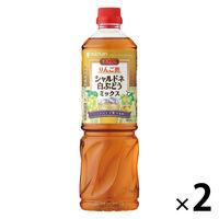 ミツカン ビネグイット りんご酢シャルドネ白ぶどうミックス(6倍濃縮タイプ)1000ml 2本