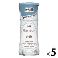 エスビー食品 S&B スマートスパイス 岩塩 23g 5本