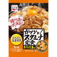 永谷園 ガツンと!スタミナ定食 にんにく生姜焼き 1セット(3個入)