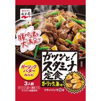 永谷園 ガツンと!スタミナ定食 ガーリックバターカルビ 1セット(3個入)
