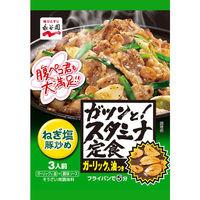 永谷園 ガツンと!スタミナ定食 ねぎ塩豚炒め 1セット(3個入)