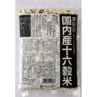 種商 国内産十六穀米業務用 1個