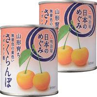 明治屋 日本のめぐみ 山形育ちさくらんぼ 1セット(2個)
