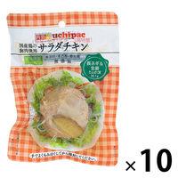 内野家 国産鶏 サラダチキン(長ネギ&生姜) 100g 1セット(10個)