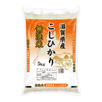 滋賀県産 コシヒカリ 5kg 【無洗米】 令和2年産 米 お米 こしひかり