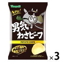 山芳製菓 ポテトチップス 男気わさビーフ 100g 3袋 スナック菓子