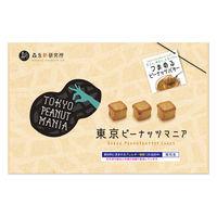 森永製菓 東京ピーナッツマニア TOKYO PEANUT MANIA 1箱(15粒) 1箱 ギフト