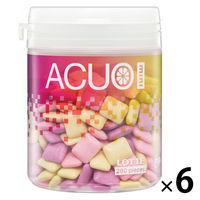 ロッテ ACUO(アクオ) mini<クリアフルーツミックス>ファミリーボトル 6個 ガム