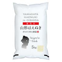 山形県産はえぬき 5kg 【無洗米】令和2年産 米 お米