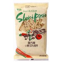 創健社 国内産小麦100%使用 ショートパスタ 300g 140301 1セット(300g×20)(直送品)