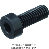 TRUSCO ガラス繊維強化ポリアミドMXD6 RENY 六角穴付低頭ボルト M4X10 50本入 208-1856(直送品)